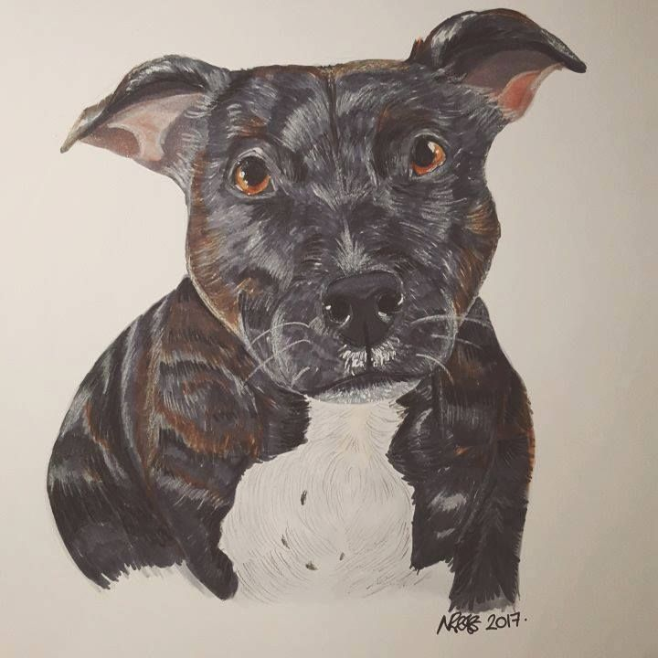 My Dog Ebony Copic Markers & Pencil A4