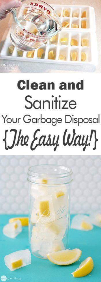 Clean and Sanitize Your Garbage Disposal {The Easy Way!} - 101 Days of Organization