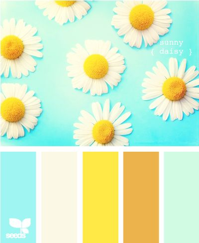 sunny daisy: Kitchens Colors, Bedrooms Paintings Colors, Color Palettes, Design Seeds, Colors Palettes, Sunny Daisies, Colors Schemes, Rooms Colors, Colors Inspiration