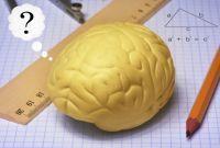 Nämä matemaattiset pikkupähkinät saavat aivonystyrät heräämään. Tehtävä sopii alakoulun 4.-5. luokille.