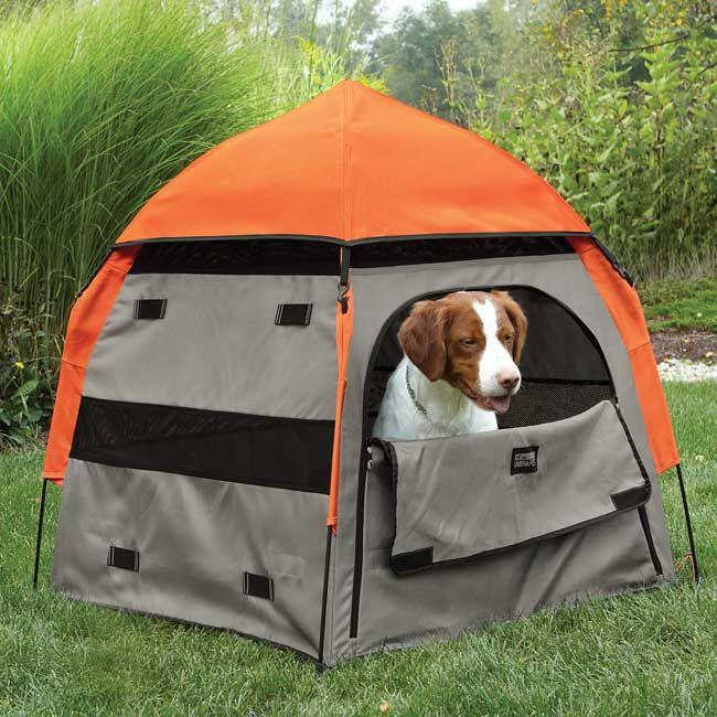 Pet Shelters Pop Up : Best ideas about dog tent on pinterest diy