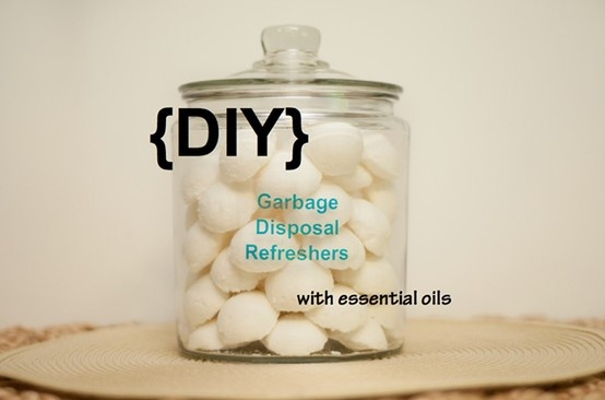 Refresh your kitchen sink by making these easy DIY garbage disposal refreshers. Your nose and sink will thank you.  Read our blog post to learn how: http://doterrablog.com/diy-garbage-disposal-refreshers-with-essential-oils
