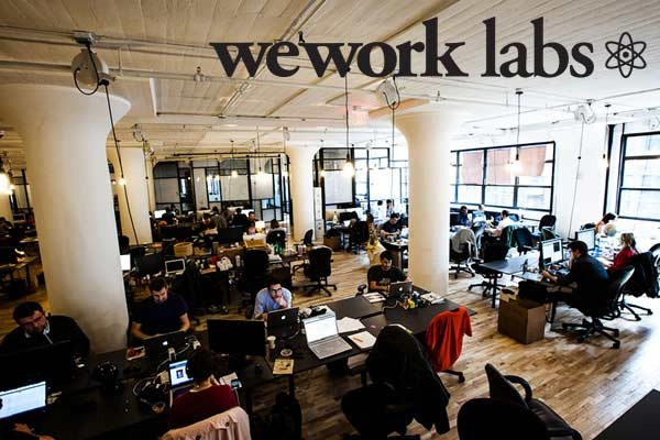 WeWork: THE PHYSICAL SOCIAL NETWORK