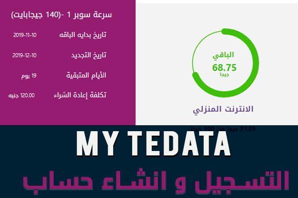 ماي تي داتا معرفة استهلاك الانترنت والمتبقي ودفع الفاتورة My Tedata Chart Labels Pie Chart
