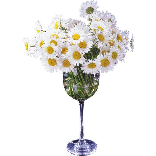 30 best Flower images on Pinterest | Bouquet flowers, Bridal ...