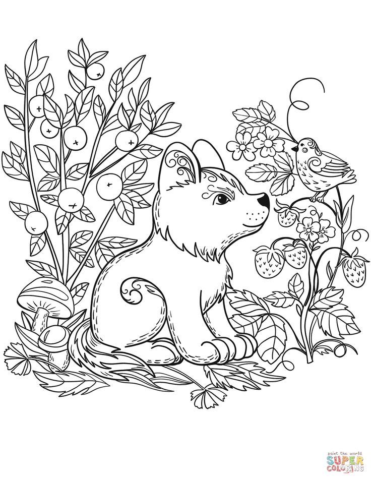 Coloring Pages Coloring Pages Of The Forest New 62 Printable