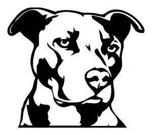 pitbull outline image - Bing Images