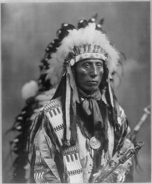 El gobierno estadounidense reconoce a 565 tribus de nativos americanos. Actualmente existen 2.5 millones de nativos, de los cuales alrededor de un millón viven en reservas, que en total abarcan una extensión de 22.5 millones de hectáreas, o 2.3% del territorio total de Estados Unidos. Es decir, los nativos americanos fueron privados de 97.7% de sus tierras. A ninguna tribu se le concedió el derecho de conservar sus tierras ancestrales y todos los habitantes fueron desarmados. Jefe 1899
