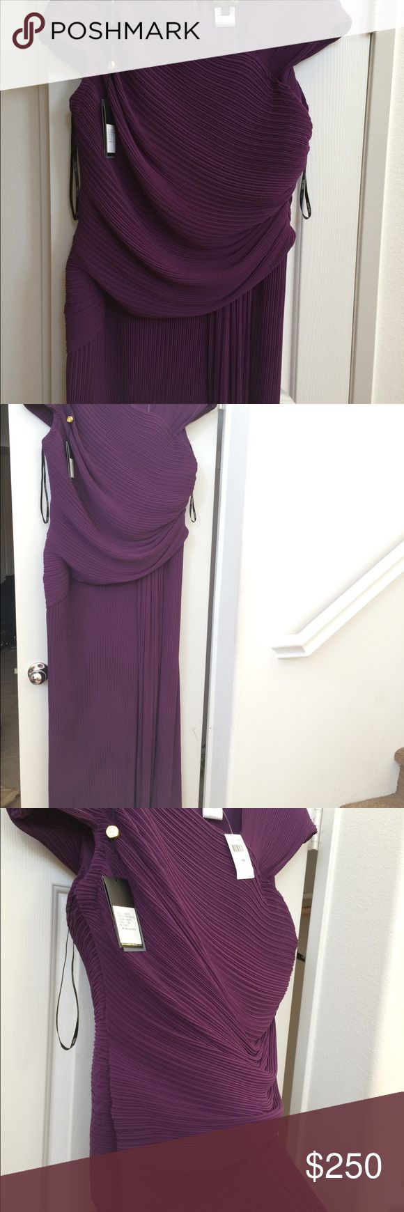 Tadashi Shoji Evening Grown/ Grape/ 14Q Exquisite Tadashi Shoji long evening dress. Brand new with tags and never worn. I have had for 5 months and don't know what to do with it. Original price was $599. This is a breathtaking dress and will turn all eyes. Tadashi Shoji Dresses Maxi