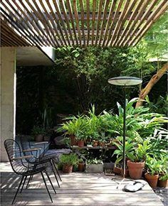 Haveplan og havedesign er mit speciale. Jeg skaber personlige haveløsninger, hvor skønhed, æstetik og funktionalitet er de gennemgående træk.