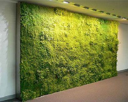 125 best Jardn vertical images on Pinterest Vertical gardens