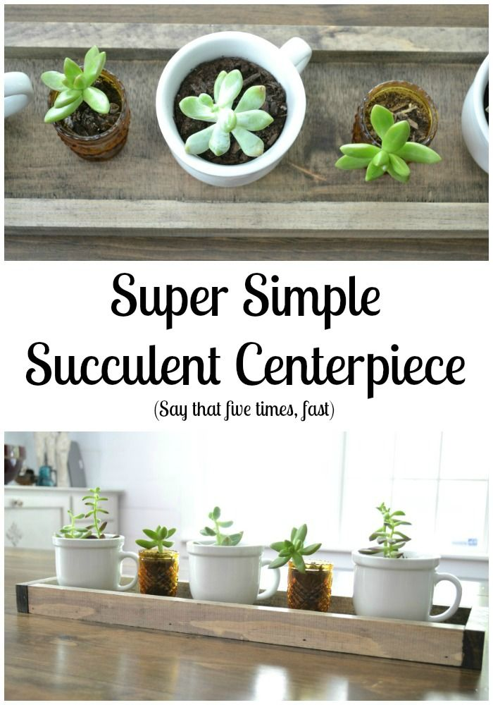 Simple succulent centerpiece | Tablescape | Dining Room Centerpiece | iamahomemaker.com