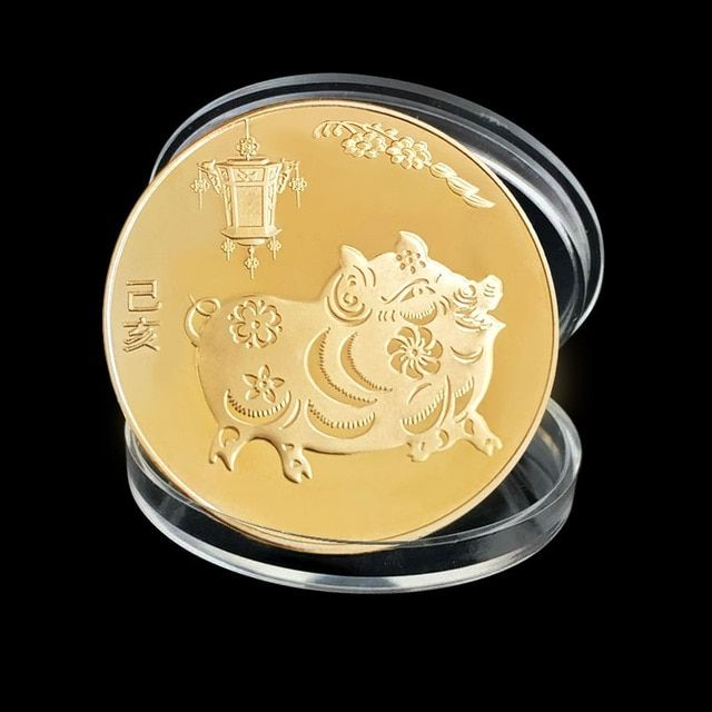 The year of the pig silver chinese zodiac 2019 anniversary coins souvenir coinHI