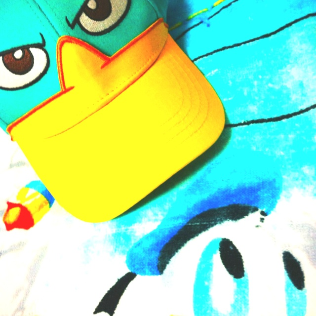 Perry & Donald