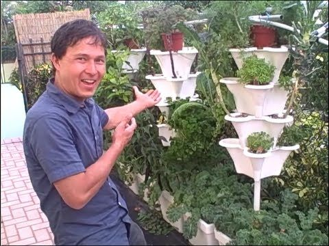 how to get the vitamins for hydroponic garden