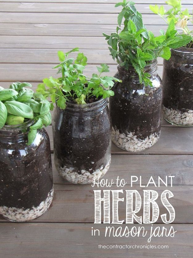 How to Plant Herbs in Mason Jars | DIY Mason Jar Projects and Ideas by DIY Ready at http://diyready.com/how-to-make-a-diy-mason-jar-chandelier/