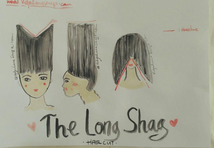 Sketsa diagram ,bagaimana memotong rambut panjang, dengan konsep  shagy
