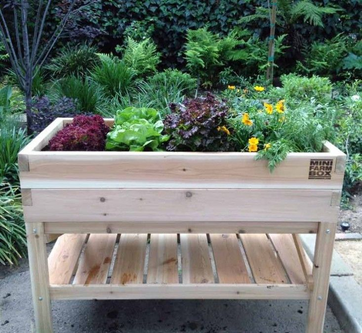 elevated-raised-bed-tabletop-garden-minifarm-box-gardenista.  An Elevated Table Garden from MiniFarm Box made of untreated cedar has a lower storage shelf and is resistant to termites and rot. It measures 48 inches long by 24 inches wide by 36 inches tall; $229.
