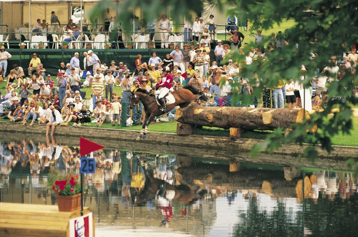 International Horse Trial in Adelaide. Yet another festival in Festival State. http://www.ozehols.com.au/holiday-accommodation/south-australia/adelaide/adelaide-city #Adelaide #Australia #HorseTrials #vacation