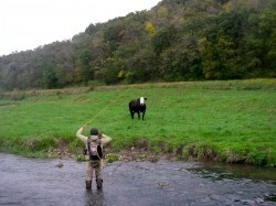 18 best images about driftless area on pinterest for Driftless fly fishing