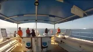 Go Excursions Tenerife - YouTube