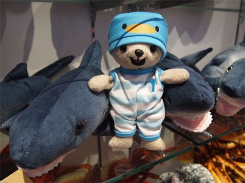 サメさんと♥
