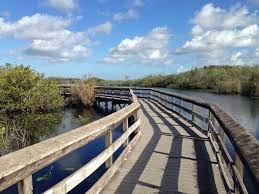 What to see in annamariaisland  Natural attractions  Coquina Baywalk  Anna Maria Island