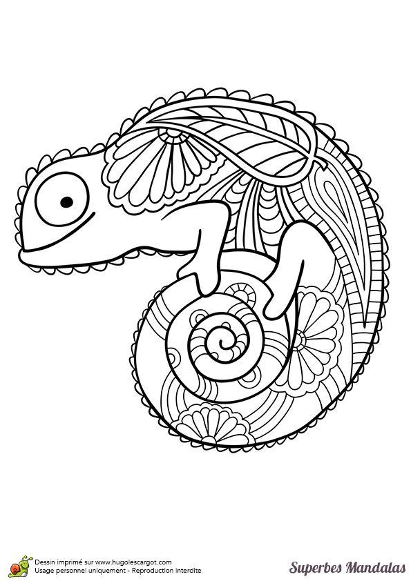 Coloriage d'un superbe mandala en forme de caméléon - Hugolescargot.com