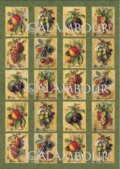 Cal 36 Vintage fruits & flower cards.