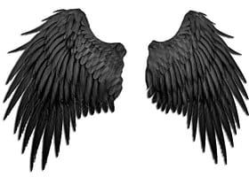 Which Victoria S Secret Angel Are You Maleficent Wings Black Angel Wings Dark Angel Wings