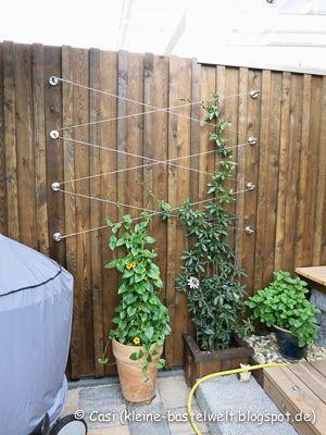 Kerstin's kleine Bastelwelt: Gartentipp - Rankgitter, Gardiniensystem aus Edelstahl als Rankgitter im Garten