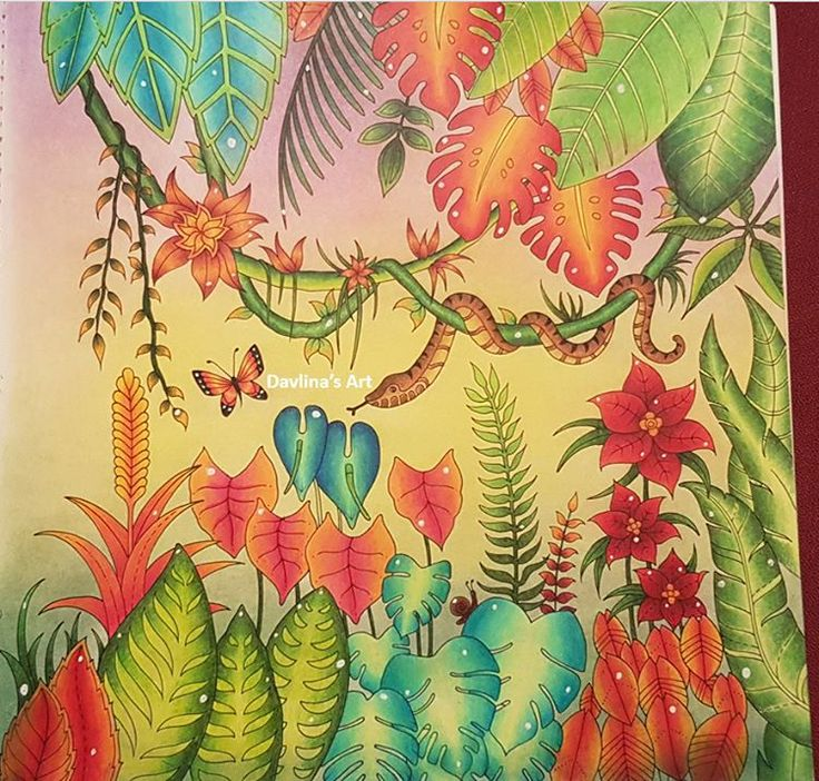 457 Best Magical Jungle Johanna Basford Images On