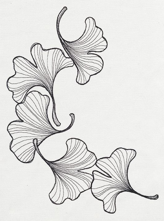 Line Drawing Coneflower : Engraved ginkgo urban threads unique and awesome