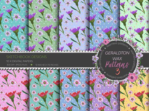 Digital papers  Geraldton Wax Flower Seamless Patterns No.3