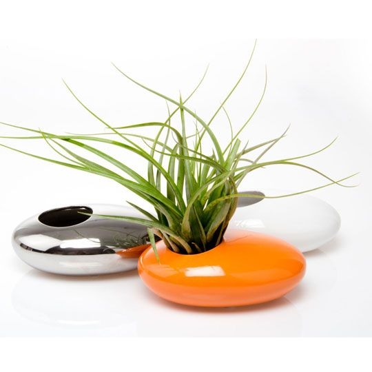 simple-modern-chive-pebble-silver-succulent-ikebana-kenzan-low-flower-containe