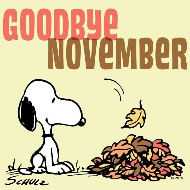 Goodbye November