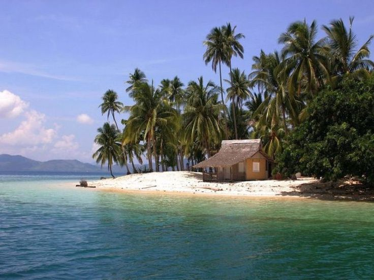 Image result for palm beach shack on the beach