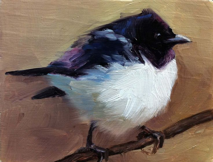 Violet-backed Starling - Bird Painting - Open Edition Print. $20.00, via Etsy.