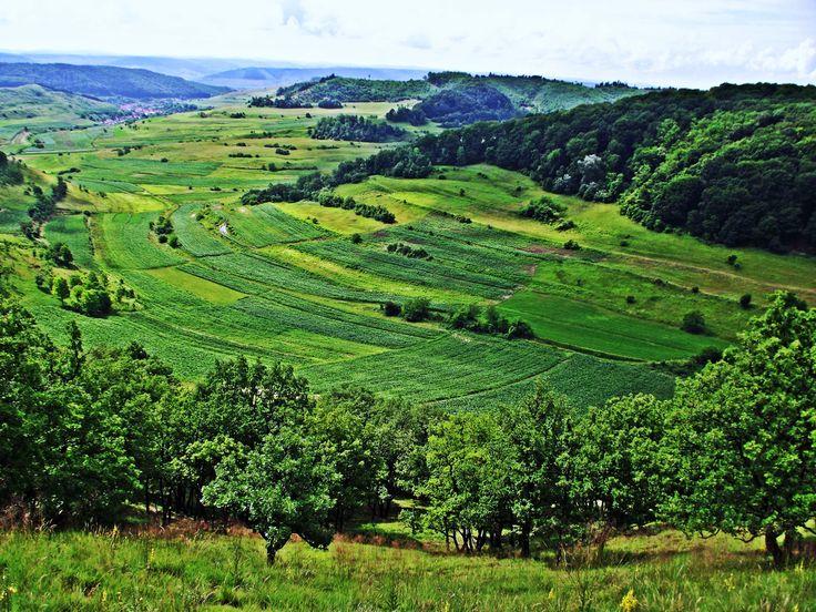 Leisure and fun in Transylvania