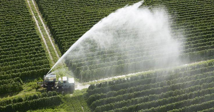 Cómo convertir las rpm de un motor a los GPM de una bomba. Un sistema de irrigación eficiente y confiable es vital para un granjero si alimenta sus cultivos a través de las etapas críticas del crecimiento. Sin embargo, la mayoría de plantas de bombeo agrícolas alcanzan una eficiencia de sólo 50 por ciento, de acuerdo a un estudio de campo de 2010, realizado por la universidad Estatal de Colorado, y ...