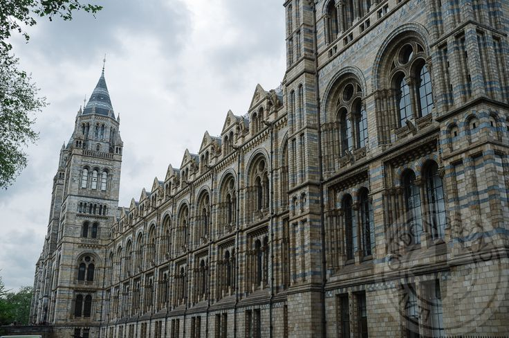 Your first 48 hours in London.The Natural History Museum. #leavelondonbehind #visitlondon #london #londonguide