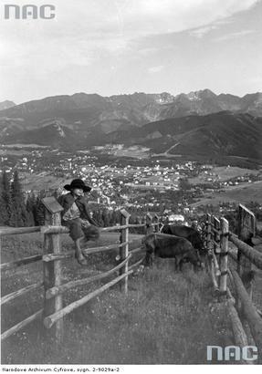 View at Zakopane.