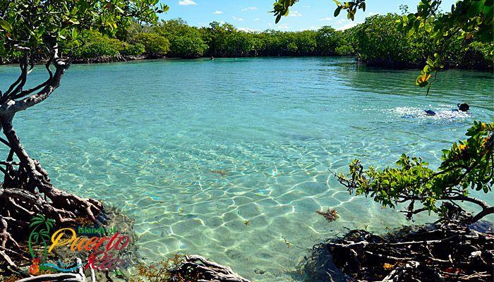Cayo Aurota / Giligan's Island - Guanica, Puerto Rico / West Coast Beaches