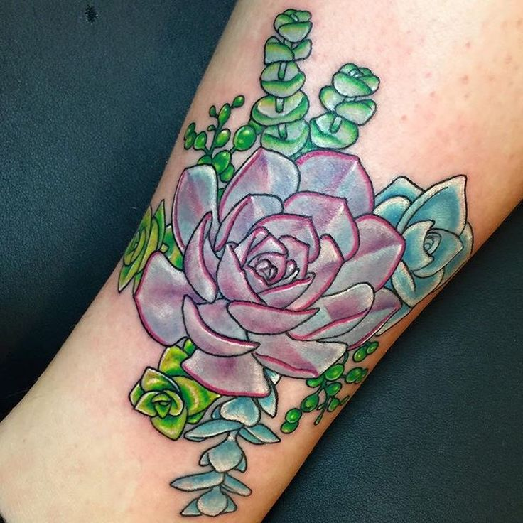 tattoo of succulents                                                       …