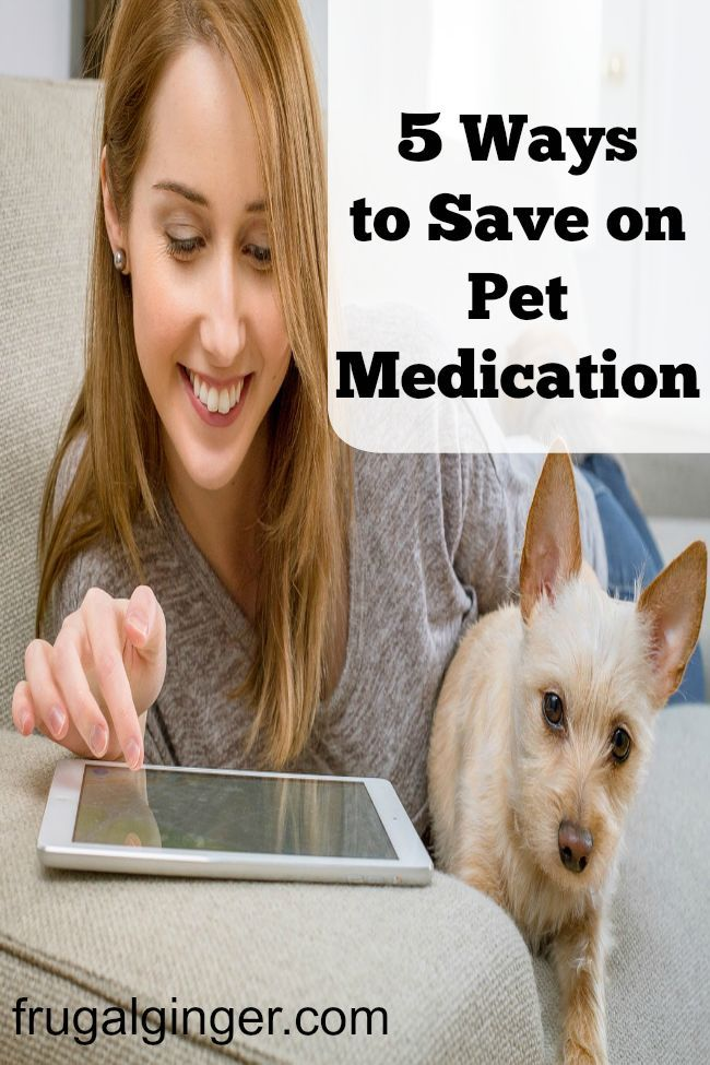 5 ways you can save on pet meds. Keep your pet healthy without going broke.