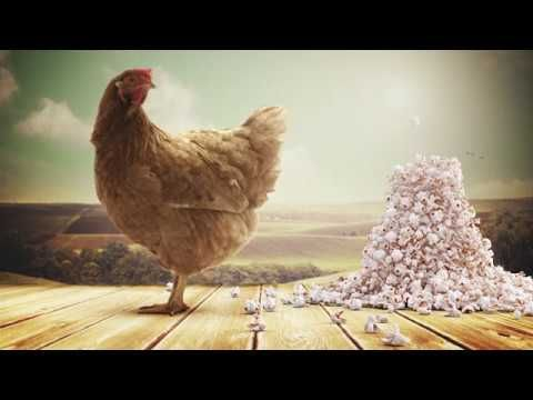 Campaign title:The popping chicken Client: Aster Hospital Agency: Y&R Miami/The Classic Partnership Aim of the campaign: getting people to seek professional advice, instead of self-medicating, when experiencing severe heartburn. Date: May 2017