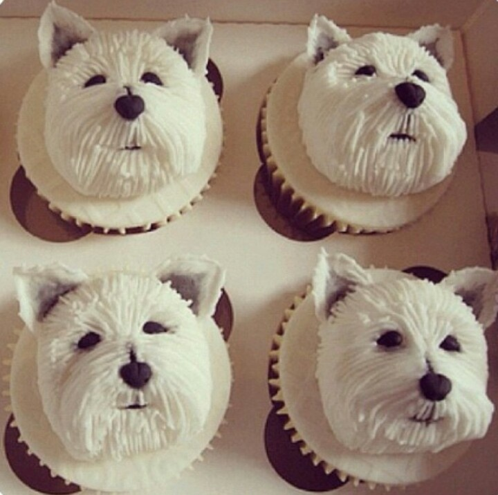 Where Can I Find Birthday Cakes For Dogs