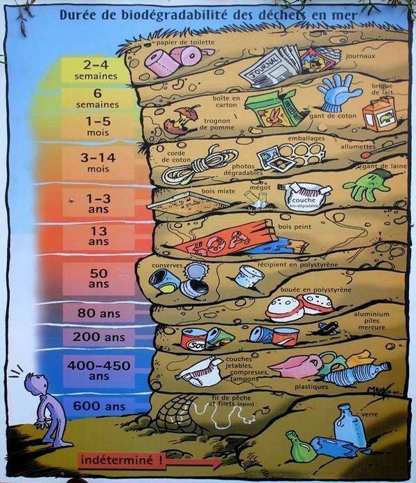 Durée de biodégradabilité.