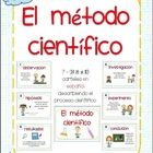 Scientific method posters in Spanish for bilingual or dual language science classrooms. Just print on tagboard, laminate, cut and post around your ...