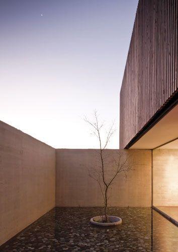 modern garden //